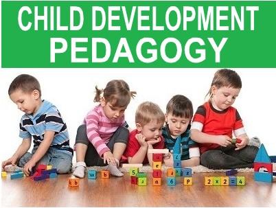 Early Childhood Education Padagogy MCQs Test 17 - MCQ Website