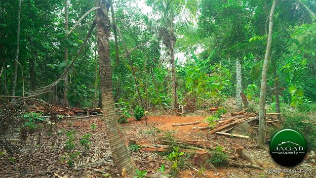 Tanah dekat Pasar Pendulan, jalan Godean km 14