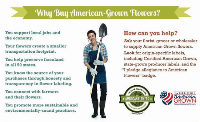 Why Buy American Grown Flowers