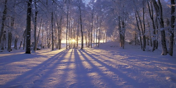 citati o snijegu