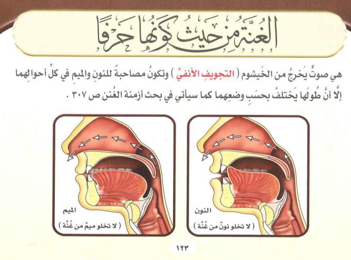البرهان في تجويد القرآن pdf