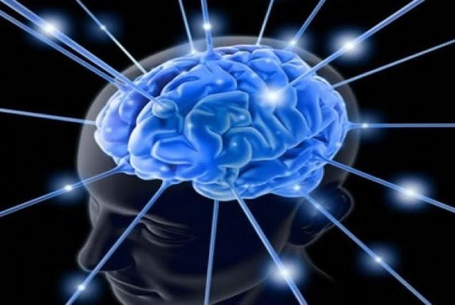 Konsumsi Vitamin ini! Agar Otak Tetap Cerdas