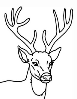 deer head coloring book pages | restlessrisa: Reindeer art tutorial