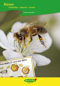 https://www.matobe-verlag.de/Unterrichtsmaterialien/Sachunterricht/Mensch-Tiere-Natur/Valessa-Scheufler--Bienen.html