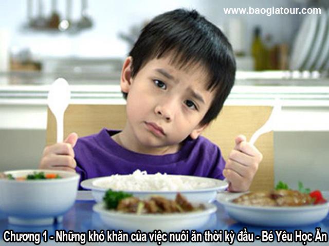 Chương 1 - Những khó khăn của việc nuôi ăn thời kỳ đầu - Bé Yêu Học Ăn