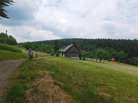 Z Przełęczy Carchel wchodzimy na zbocza Gołuszkowej Góry.