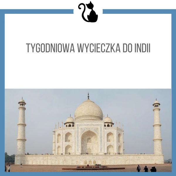 Tygodniowa wycieczka do Indii (dużo zdjęć)