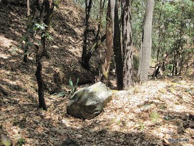 Paisajes de la barranca del Tecuán