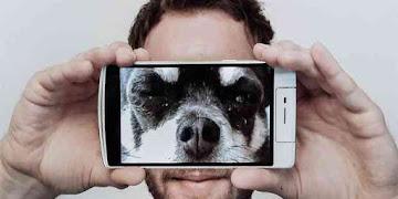 Cara Simpel Bikin Video Pakai Smartphone Terlihat Keren & Profesional