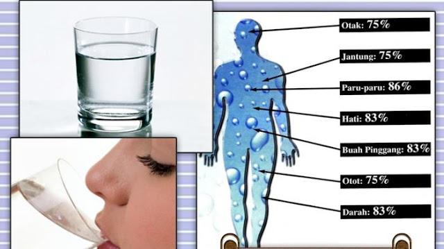 WOW Luar Biasa!! Minum Air Putih Dengan Cara Ini Mampu Kurangi Berat Badan 4,3 Kg Per Hari...