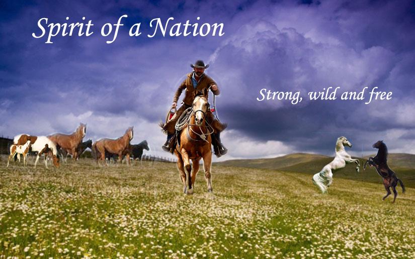 Spirit of nationalism vicente 2013