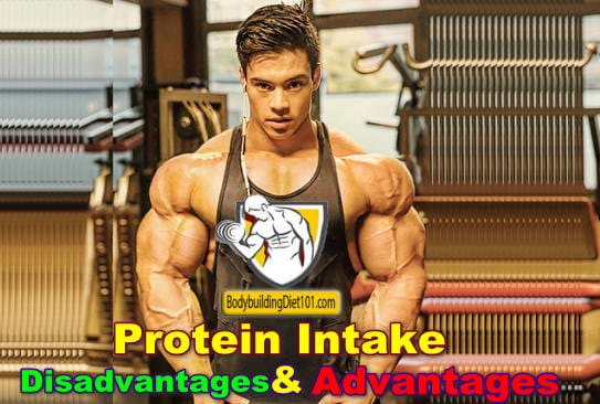 How Bodybuilding Protein Intake can Help You Increase Muscle Over Time