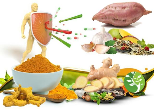 Los mejores alimentos para aumentar su sistema inmune