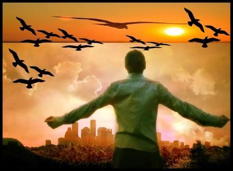 Paisagem do entardecer com homem de braços abertos observando o revoar dos pássaros. No alto o sol empalidecendo.