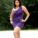 Namitha in Violet Dress Photos