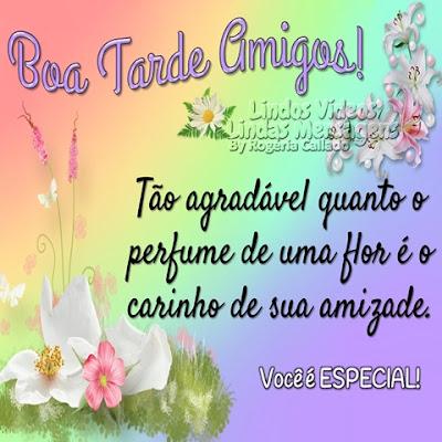 Boa Tarde Amigos! Tão agradável quanto o  perfume de uma flor é o  carinho de sua amizade. Você é ESPECIAL!