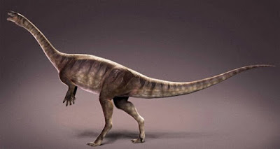 Descubren en Brasil especie de dinosaurio antiguo-TuParadaDigital