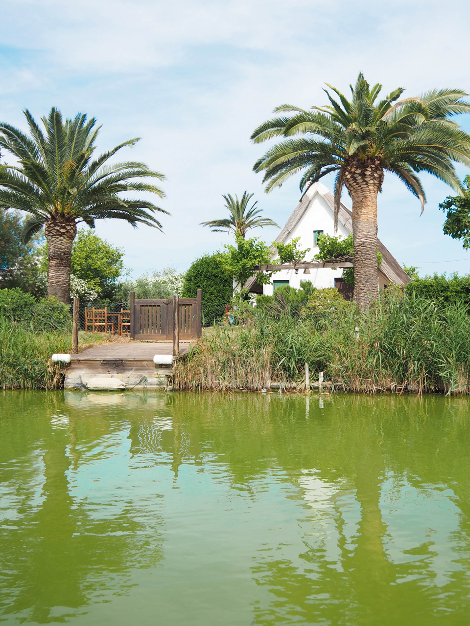 Voyage: Parc naturel de L'Albufera de Valencia
