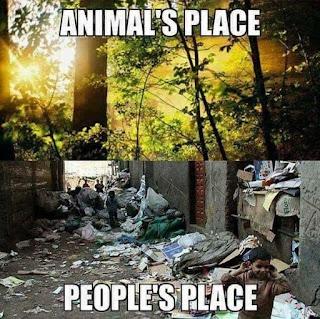 tempat hidup manusia dan hewan yang bertolak belakang