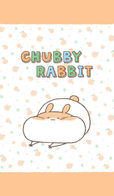 Chubby Rabbit-Clementine