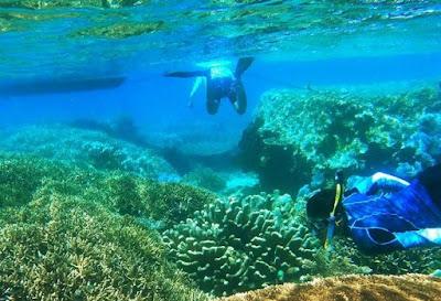 Tempat Spot Snorkeling Sulawesi Selatan Yang Keren Banget