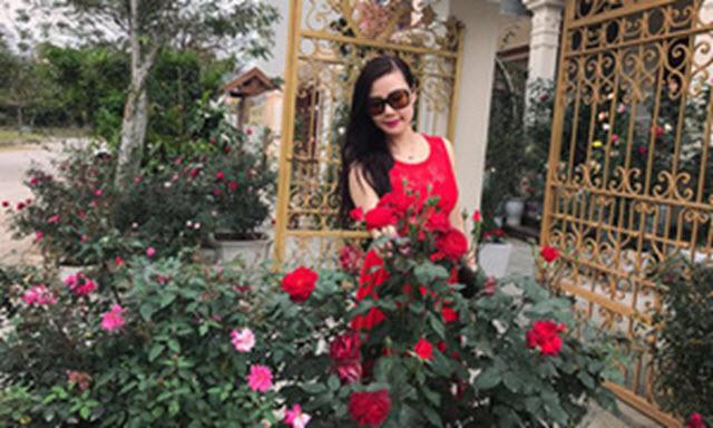 Sân vườn 50 m2 phủ kín hoa hồng của bà mẹ Hòa Bình