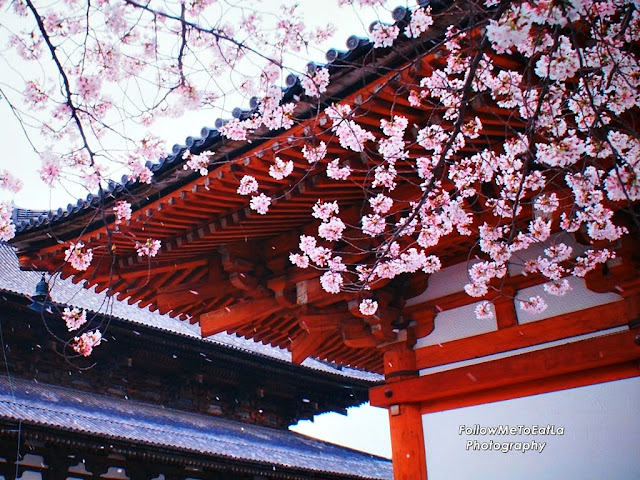 Cherry Blossom Captures The Flavour Of Spring