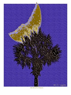 http://fineartamerica.com/featured/blue-moon-over-palmetto-c-f-legette.html?newartwork=true