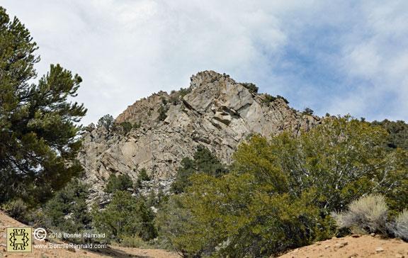 Corey Peak Trail, Nevada