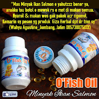 ofish oil,minyak ikan, minyak ikan salmon, ikan salmon, giza herbal