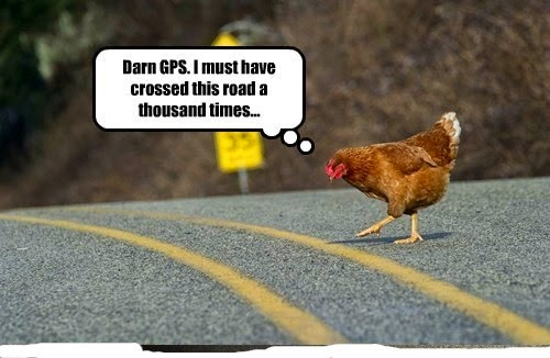 Chicken Jokes One Liners: Viraj Bhagat: Why Did The Chicken Cross The Road? #12