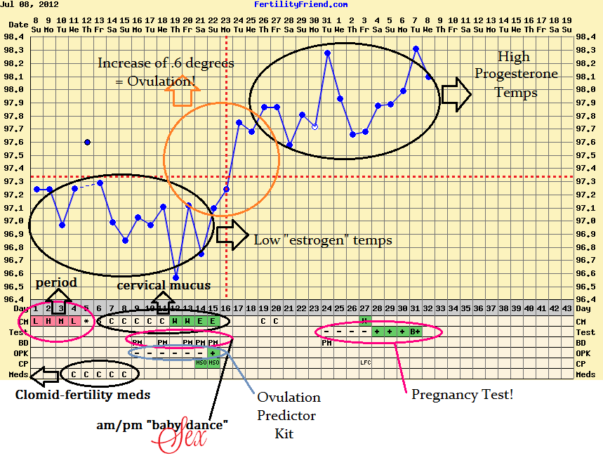 Here Is My Chart From The Cycle I Got Pregnant Have Made Notes So That You Can See Conclusions Draw Temperatures