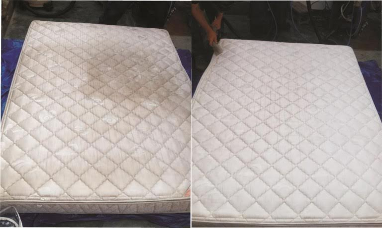 Esta es la forma m s eficaz de limpiar su colch n de for Limpiar colchon amoniaco