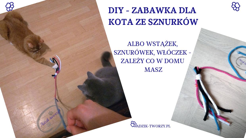 DIY: Zabawka dla kota ze sznurków w formie wędki