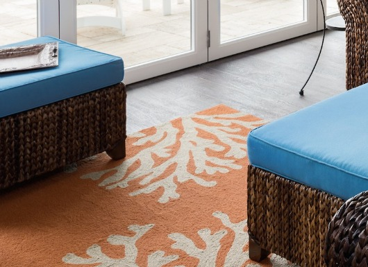 Coral Area Rug Indoors