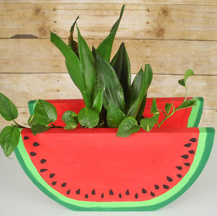 Watermelon Slice Planter DIY - Gina Michele
