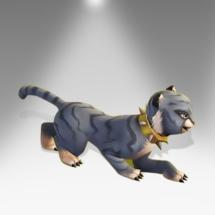 Grey Tabby Cat Cub - Pirate101 Hybrid Pet Guide