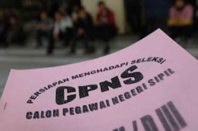 Kuota 100.000 Guru CPNS Bukan Hanya untuk Honorer