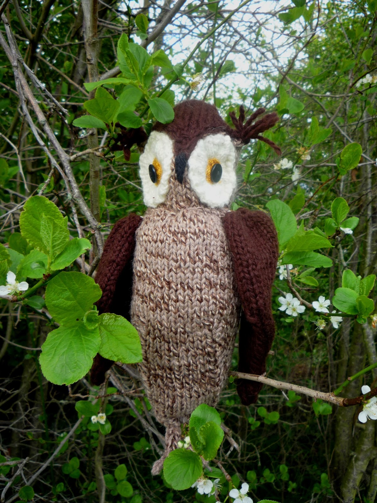 6729fa632ba695 the Creations of Crazy Dazy  woollen woods