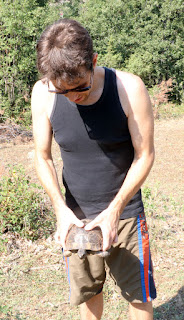 S found a tortoise