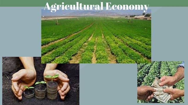 4 Major causes of low Agricultural productivity in India,  Measures  to increase productivity , agricultural productivity, AGRICULTURAL ECONOMY