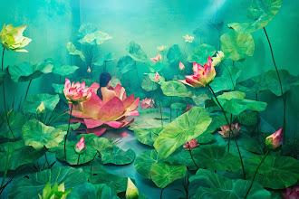 Expo Ailleurs : Stage of Mind, les fugues oniriques de JeeYoung Lee - Opiom Gallery à Opio - Jusqu'au 7 mars 2014