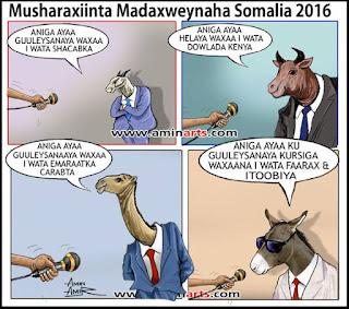 Photo Somali meel saartay amin amer eeg