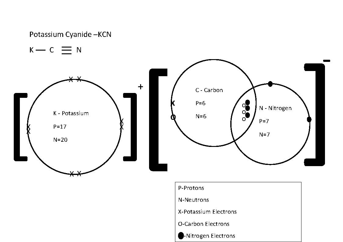 2p3 Lss Alex Wu 2p329 Science Assignment