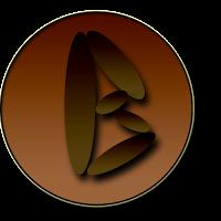 www.bidaricell.com
