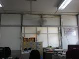 Office Cat Baru