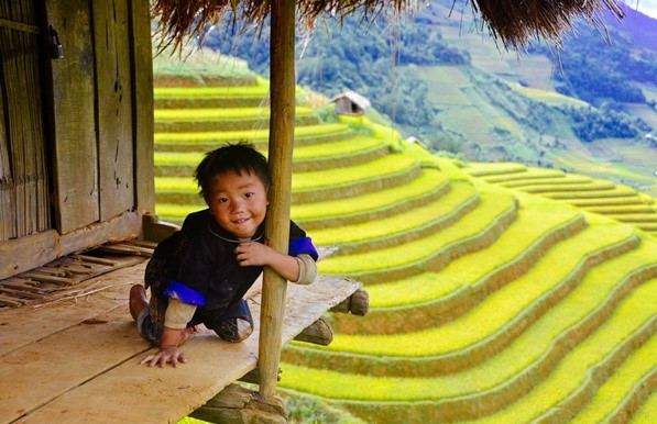 Top 5 sites of ripe rice hunting can't be missed at Mu Cang Chai 4