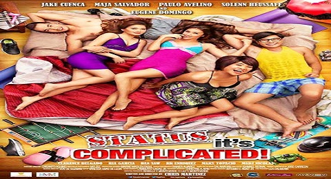 Status: It's Complicated! (2013) DVDRip