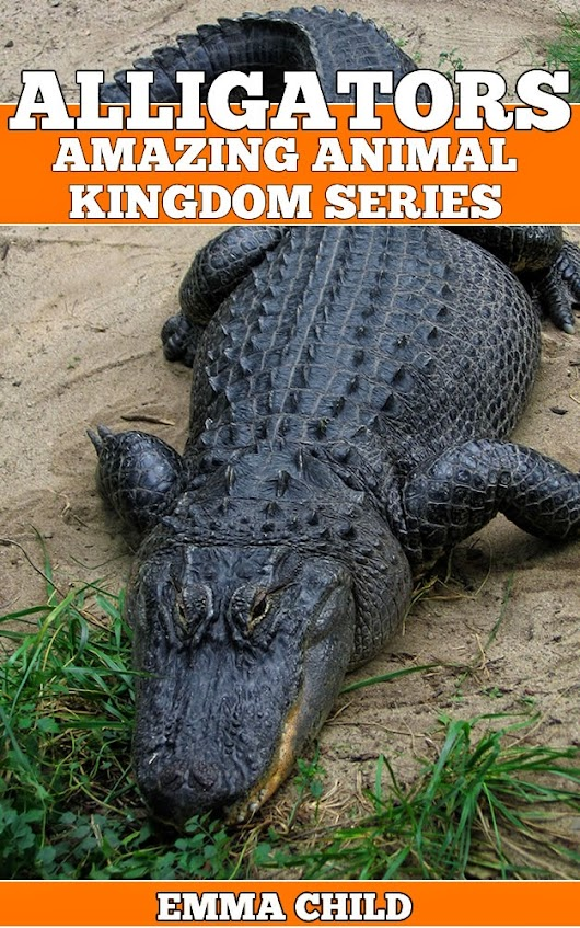 ALLIGATORS: Fun Facts and Amazing Photos of Animals in Nature (Amazing Animal Kingdom Book 13)