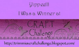 http://trimmiescraftchallenge.blogspot.nl/2015/11/winners-and-top3-challenge-335-29th-of.html
